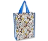 Snoopy Vertical Lesson Bag