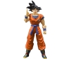 [Bandai] S.H.Figuarts : Dragon Ball Goku -Earth Grew Up Saiyan-