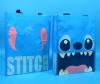 Stich Lesson Bag