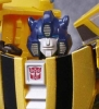 Transformers Generations line - TG-26 Bumblebee Gold Bug