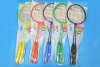 Color Steel Badminton